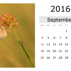 21 de septiembre alzheimer