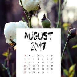 Mi cuidador ha de trabajar el 15 de agosto