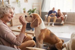 Abuela dando de comer a su mascota