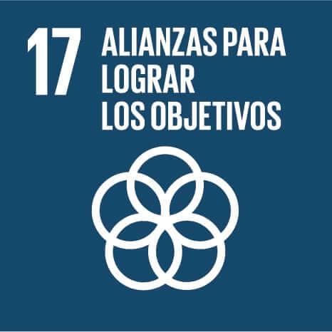 Logo del Objetivo de Desarrollo Sostenible número 17: Alianzas para lograr objetivos